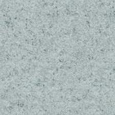 Линолеум Spr9101